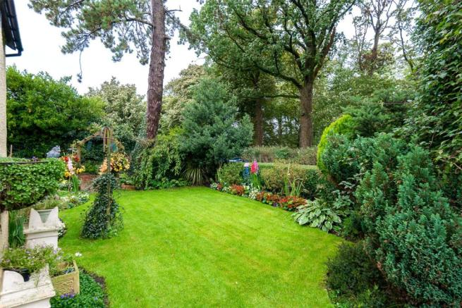 Garden (C)