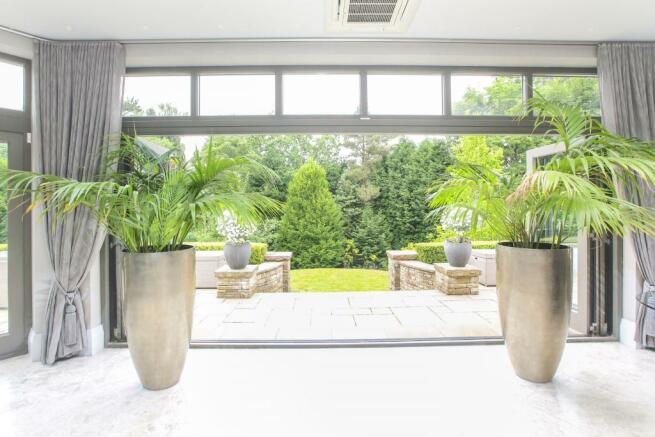 Garden from Living K
