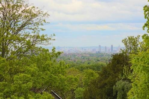 Countisbury View