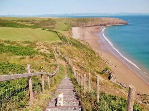 Path down to Porth C
