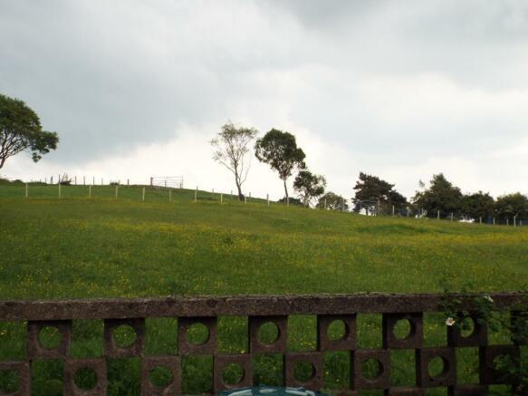 Side Views