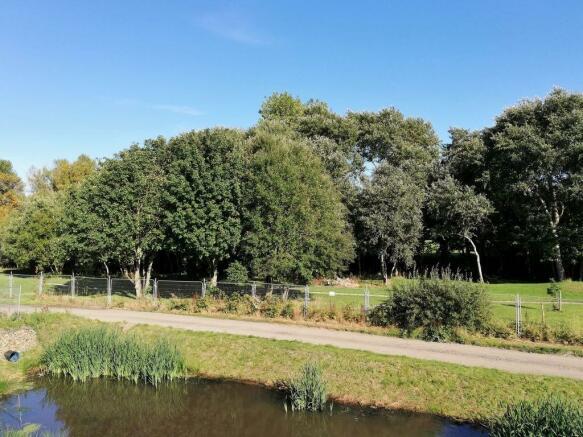 Leafy estate