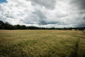 Photo of Plots at Whiteford, Pitcaple, Inverurie, Aberdeenshire, AB51 5EB