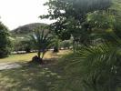Villa Front garden