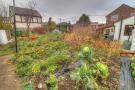 Section of Vegetable Garden