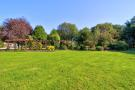 Established Garden