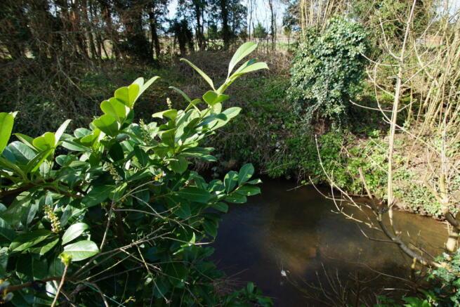 Stream to the rear garden