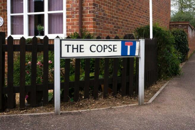 the copse.jpg