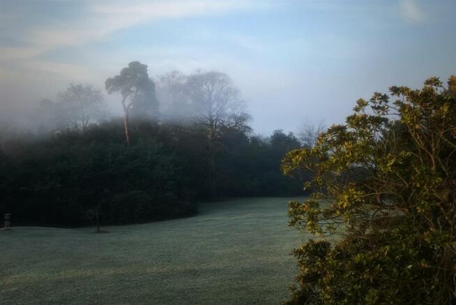 40 Fog From RH Terrace.jpg