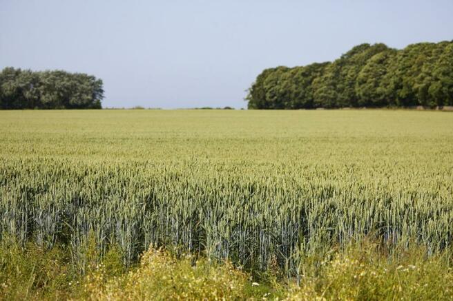 Farme land fields