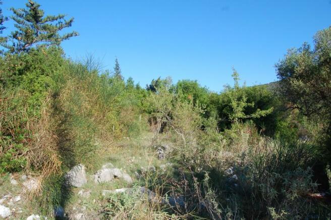 Landscape & terrain