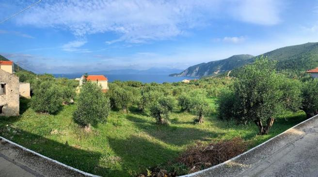 Panoramic from house