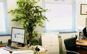 Photo of Grove Business Centre, 560-568, High Road Tottenham, N17 9TA