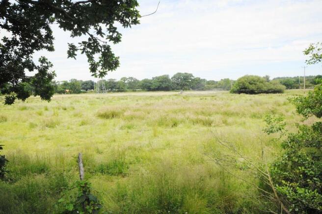 Farmland View