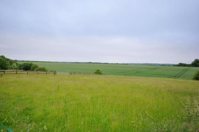 Paddock with additional land available adjacent