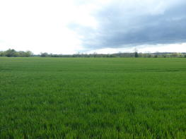 Photo of Lower Glebe Farm, Glatton