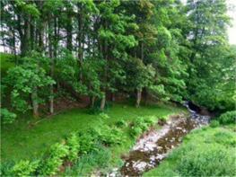 Photo of Woodburn Farm, Roberton, Hawick, Scottish Borders