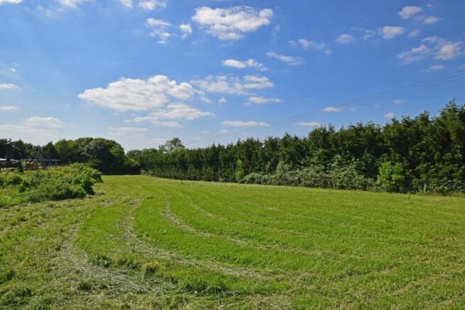 Uppington Hollow, paddock 2b.jpg