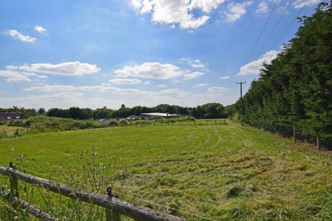 Uppington Hollow, paddock 3b.jpg