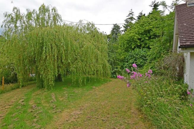 Corner Mead, garden 4.jpg
