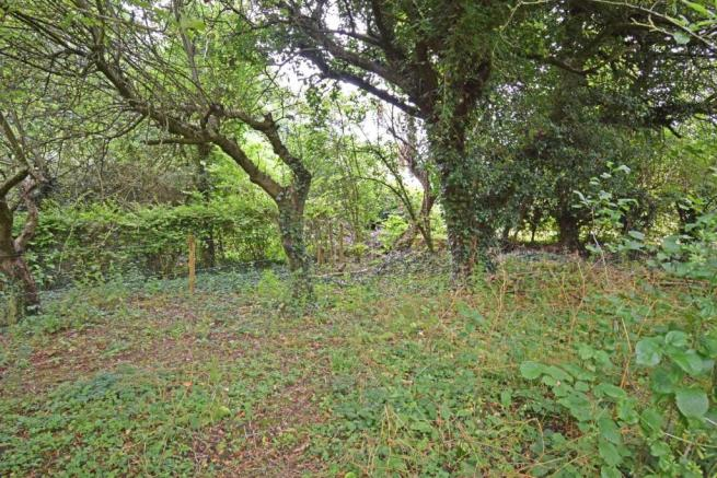 Corner Mead, garden 3.jpg
