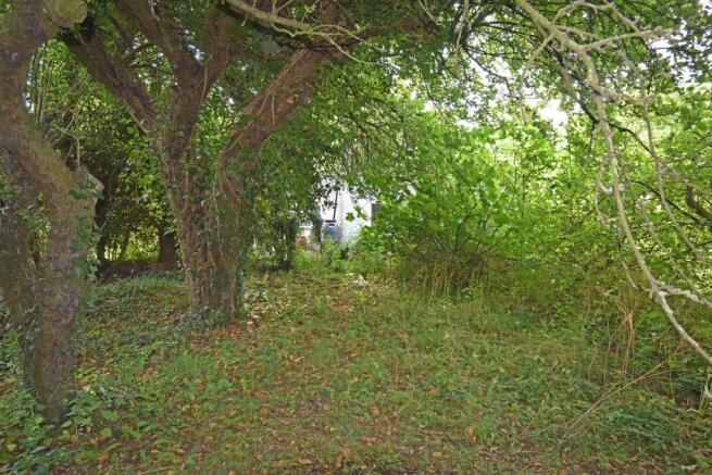 Corner Mead, garden 6.jpg