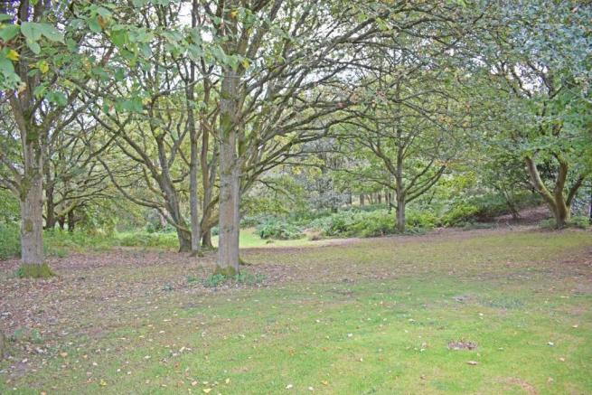 Crantock, Spinney 3.jpg