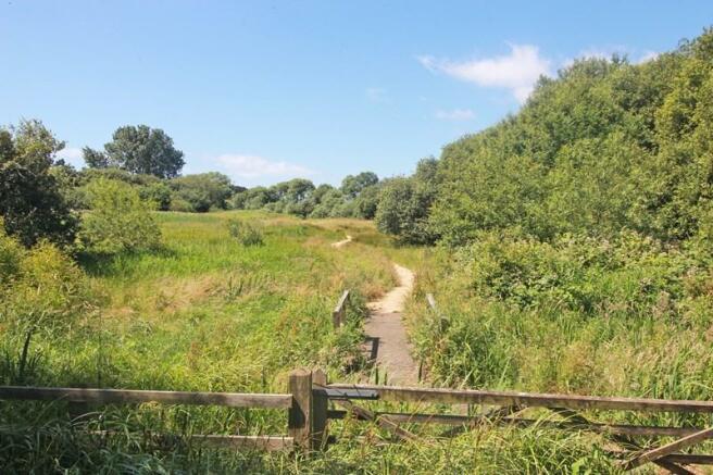 Nearby Stanpit Marsh