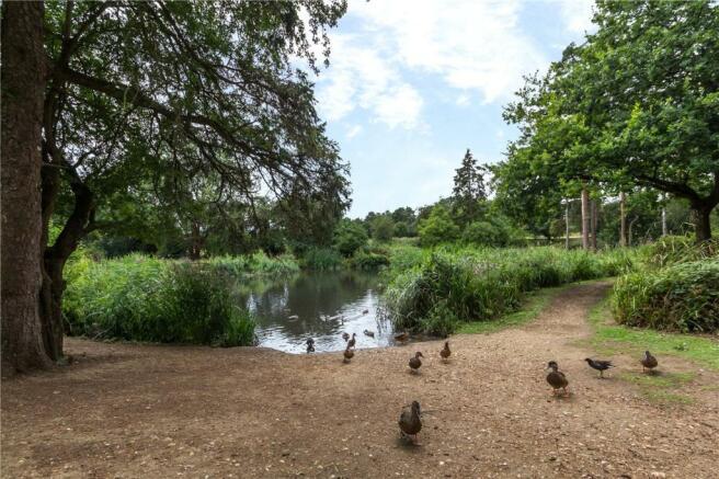 Harpenden Ponds