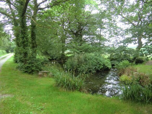 Pond by lane