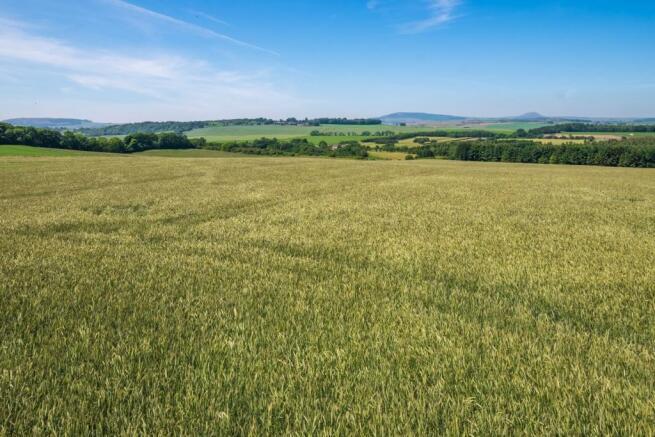 Land Looking North