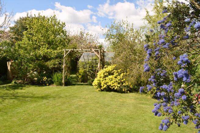 Rear of garden