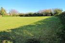 Lower field shot ...