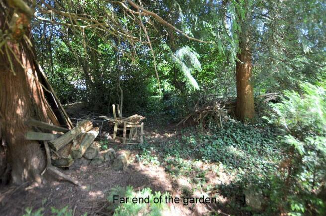 Far end of the garden