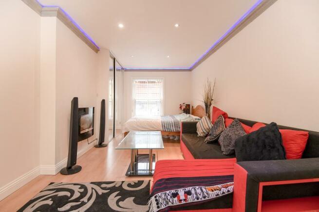Living Room/Bedroom1