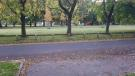 Photograph 2