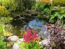 Ornamental Pond.jpg