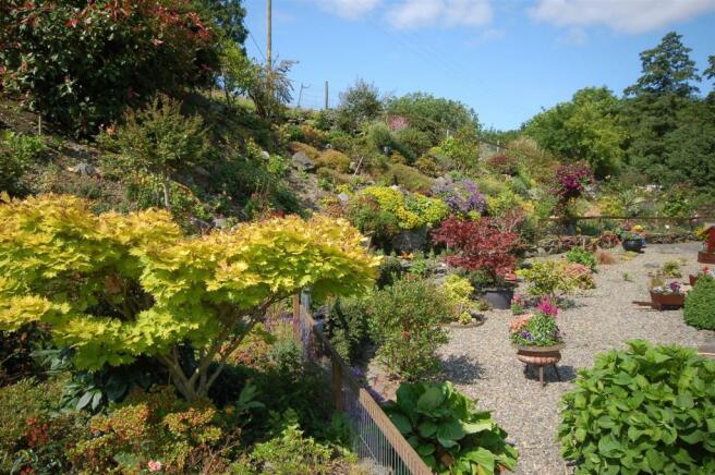 Tawelfan - garden 4.jpg