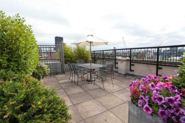 roof.terrace