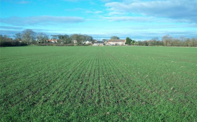 Arable Lot 2