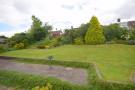 Rear Garden with Patio