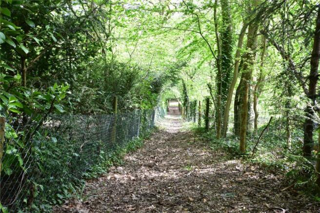 Walkway To Paddock