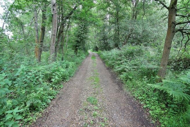 Gravel Track.JPG