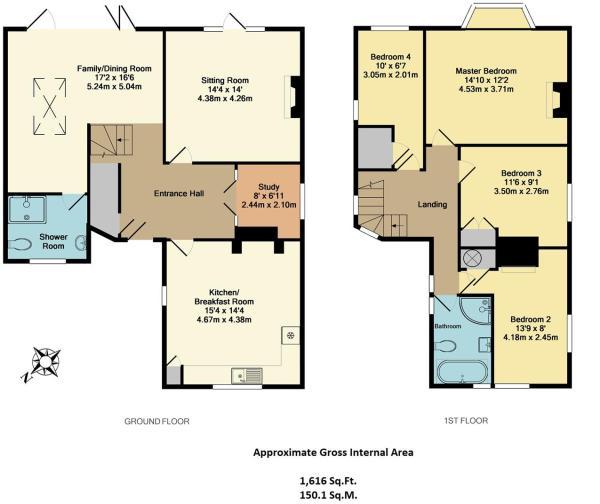 31 Elsley Road - Floorplan.jpg