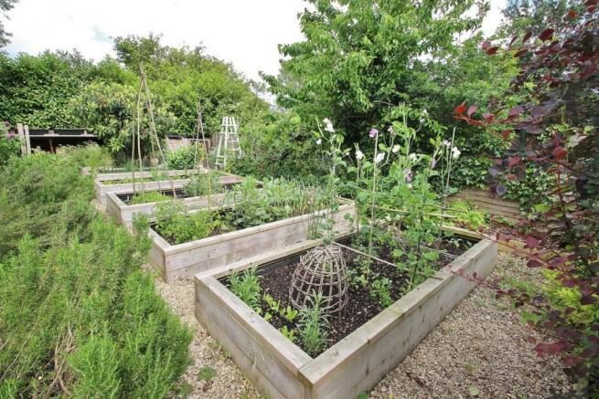 Vegetable Garden Area.JPG