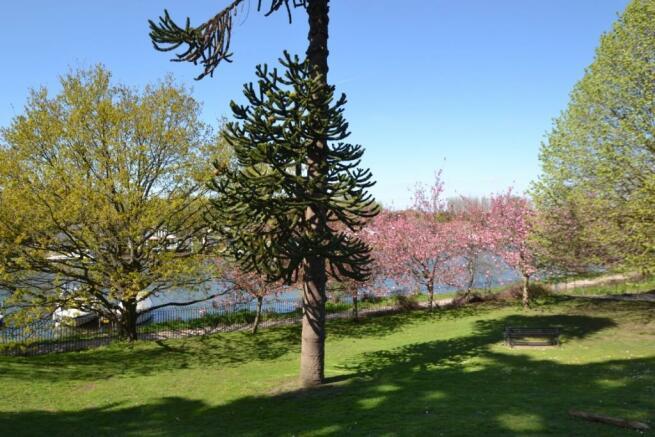 Park/River