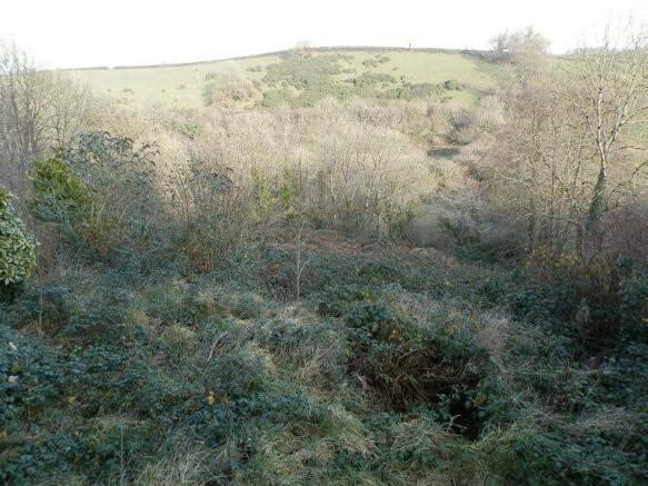 Overgrown Padd...