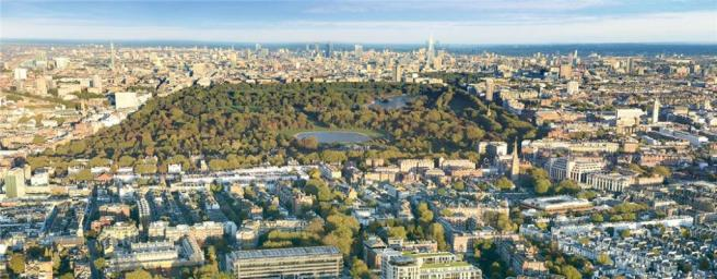 Holland Park - View