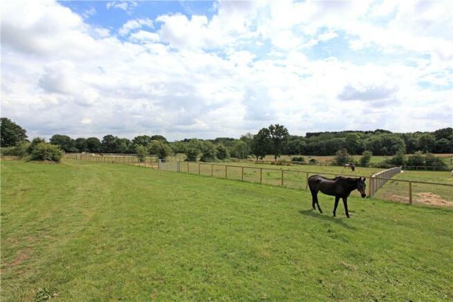 Equestrian Fields