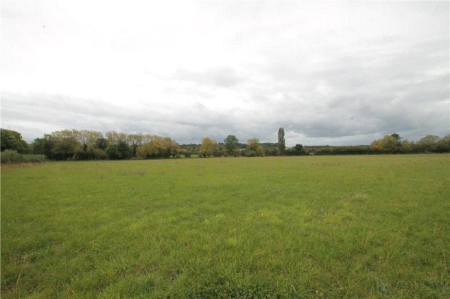 Separate Field